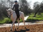 Stage Hacienda Dos Olivos - Andalusië - Spanje - Johanna Beattie Batista - Farruco